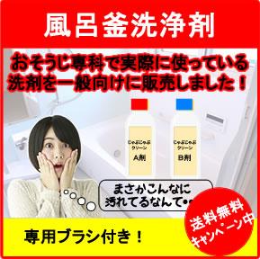 風呂釜洗浄剤